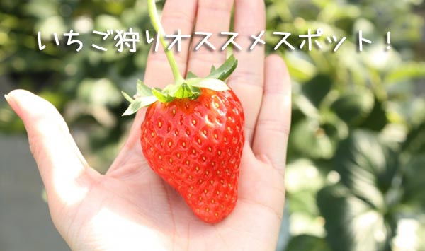 e9bfa803df2a8ac1bdec6402bec5fa9e_s.jpg